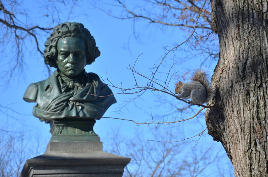 Beethoven spiegato in due minuti